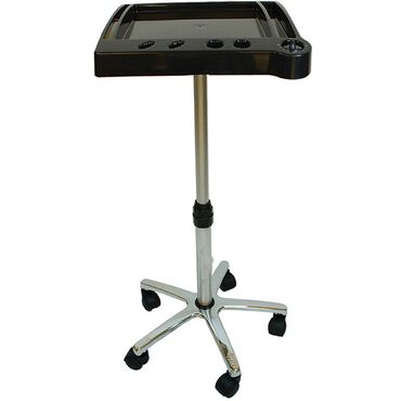 Salon Services Tint Trolley