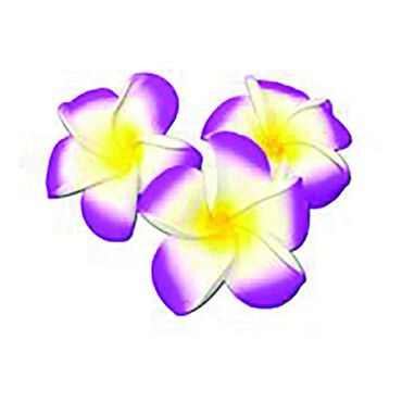 Beauty Express Floating Frangipani Lilac Pack of 10