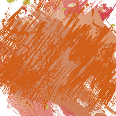 Indola #Colorblaster Nashville Pigmented Conditioner, 300ml