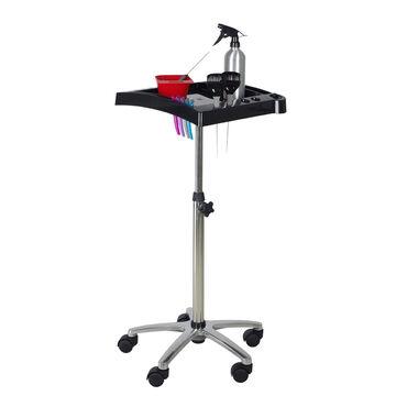 Salon Services Idaho Tint Trolley