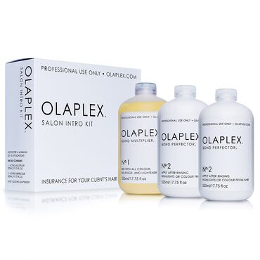 Olaplex Salon Intro Kit Hair Treatment Salon Services