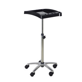 Salon Services Idaho Tint Trolley