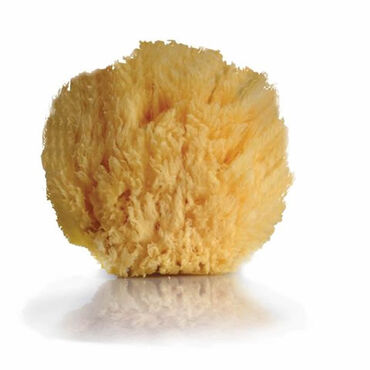 Beauty Express Natural Sea Sponge 13cm
