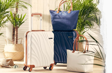 Free Suitcase & Tote bag